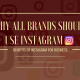 WHY ALL BRANDS SHOULD USE INSTAGRAM